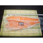 国産 銀鮭の半身1kg前後 銀鮭 銀サケ