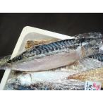ショッピング価格 さば一夜干し銚子製造3枚 さば文化干し サバ 鯖