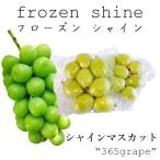 冷凍 ぶどう  『シャインマスカット』 100g×6袋(約1房) 山梨県笛吹市産