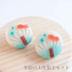 季節の上生菓子6個 和菓子 ギフト 上生菓子 老舗