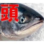 鮭の頭だけ10個入り(有塩) (さけ 紅鮭 シャケ頭 鮭頭 あら かま 氷頭 なます わけあり さけの頭 氷頭なます用 しもつかれ