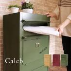ヴィンテージ風スタンドポスト Caleb カレブ 郵便受け 郵便ポスト 宅配ボックス 一戸建て用 屋外 大型 置き型 スタンドタイプ ヴィンテージ