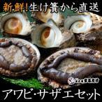 あわび さざえセット 千葉県産 新鮮 鮑 アワビ 500g 栄螺 サザエ 1kg 国産