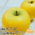 ギフト りんご シナノゴールド 約3kg Bランク  マル特 長野県産 CA貯蔵 送料無料 フルーツ リンゴ 信州