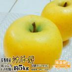 お歳暮ギフト 冬ギフト フルーツ りんご シナノゴールド Bランク マル特 約5kg 12玉-18玉 長野 県産 リンゴ 送料無料