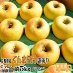 ぐんま名月 送料無料 Cランク 家庭用 約5kg 訳あり 長野産 りんご