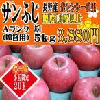 2/28まで販売 りんご フルーツ   [送料無料]  サンふじ  Aランク(贈答用)  約5kg (小玉限定 20玉) 長野産 りんご  糖度13度以上 訳あり