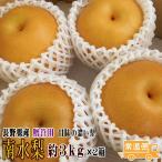 お得な2箱セット 南水梨 約3kg×2箱 贈答用 梨 送料無料 産地直送 長野県産 ギフト 甘みの濃いなんすい ナシ なし