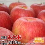 フルーツ りんご あいかの香り Cランク 家庭用 約10kg 訳あり 24玉〜36玉 長野県産 リンゴ 送料無料