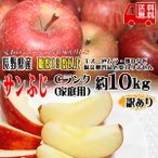 訳あり りんご サンふじ 約10kg Cランク 家庭用 糖度1