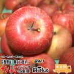 [送料無料]  サンふじ Cランク(家庭用)約5kg 長野産 りんご  [CA貯蔵]   訳あり  [光センサー選果] (12玉〜18玉) 糖度13度以上