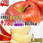 ギフト りんご サンふじ 約3kg Aランク 贈答用 CA貯蔵 糖度13度以上 長野県産 送料無料 フルーツ リンゴ 信州