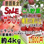 【セール】サンふじ Cランク(家庭用) 約4kg 長野産 りんご  [CA貯蔵]  訳あり  [光センサー選果] (11玉〜14玉) 糖度13度以上