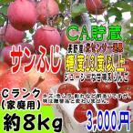サンふじ Cランク(家庭用) 約8kg 長野産 りんご  [CA貯蔵]  訳あり  [光センサー選果] (22玉〜28玉) 糖度13度以上
