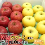 サンふじ・シナノゴールド 詰合せ 送料無料 Cランク(家庭用) 約10kg  (24玉〜36玉) 訳あり 長野産 りんご