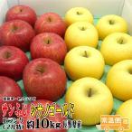 サンふじ・シナノゴールド 詰合せ 送料無料  Bランク(マル特) 約10kg   (24玉〜36玉)  長野産 りんご