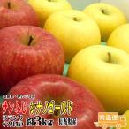 ギフト りんご サンふじ・シナノゴールド 詰合せ Bランク マル特 約3kg 長野県産 CA貯蔵 送料無料 フルーツ リンゴ