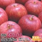 [送料無料] シナノスイート Bランク(マル特) 約5kg 長野産 りんご (12玉-18玉)  10月中旬頃〜11月中旬頃