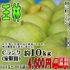 王林  長野産りんご 送料無料 Cランク(家庭用)約10kg (24玉-36玉) 訳あり | トミおじさんのお店
