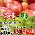 サンふじ・王林 詰合せ 送料無料 Cランク(家庭用) 約10kg  (24玉〜36玉) 訳あり 長野産 りんご