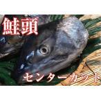 北海道宗谷産!鮭の頭(センターカット)5パック