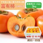 富有柿 ふゆがき 愛媛県産 柿 家庭用 大・小込み 3kg 約11~15玉