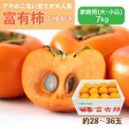 富有柿 ふゆがき 家庭用 大・小込み 7kg 約28~36玉