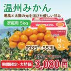 温州みかん 家庭用 M~L 5kg 約35~55玉