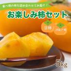 お楽しみ柿セット  愛媛県産 柿 詰め合わせ 甘柿・シブヌキ柿 5kg