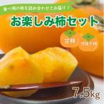 お楽しみ柿セット 愛媛県産 柿 詰め合わせ 甘柿・シブヌキ柿 7.5kg