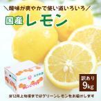 レモン 訳あり 愛媛県産 レモン 10kg