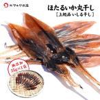 (石川県産)干しほたるいか:35g(17匹前後)×1袋