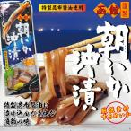 塩辛 函館朝いか沖漬 1尾 特製昆布醤油  厳選素材するめいか|マルナマ食品