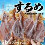 お歳暮 本場函館するめ 超特大サイズ5枚入り(500g〜550g) 驚きの大きさ 北海道産 スルメ 珍味 おつまみ