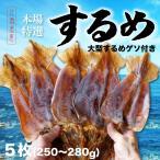 お歳暮 本場函館するめ 特大サイズ5枚入り(250g〜280g) ビックリサイズ 北海道産 スルメ 珍味 おつまみ