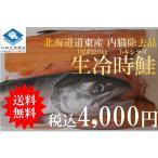 時鮭 トキシラズ 北海道道東産 天然物 1尾約2.0kg 内臓除去品