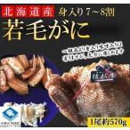 【若蟹】 毛がに 毛ガニ 北海道産 浜茹で毛がに 1尾約570g 若蟹 身入り7-8割 まずはお試し 条件付き送料無料