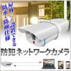 【着後レビューで送料無料】アールアイジャパン Ri-JAPAN 防水 防塵 赤外線暗視付き 防犯ネットワークカメラ RCC-7100WP