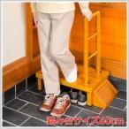 手すり付き玄関台 60cm 耐荷重 100kg 手すり付き踏み台 手すり付 段差 解消 安全 介護 歩行 昇降 上り下り 補助 VS-RF60