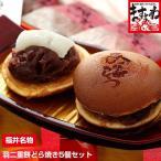 お試し セール 福井県 銘菓 和菓子 スイーツ もっちも