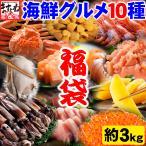 螃蟹 - 【海鮮10種をお得に食べ比べ】カニ1匹入で計約3kg!各種ランキング1位獲得商品10種!お得な海鮮グルメ10種豪華福袋[冷凍便/送料無料]