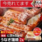 うなぎ 鰻 unagi 最安挑戦 数量限定500gで4990円 にほ