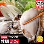 特産品[広島かき カキ 鍋]広島県能美島周辺(清浄海域)産の大粒ジャンボ広島牡蠣2kg/約60粒前