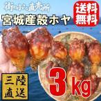 宮城県石巻産 殻付ほや(生食用)3kg【送料無料】お酒のつまみにピッタリ♪