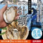 送料無料 宮城県産 殻付き 活牡蠣 3kg ※大小混合で約20〜30個【加熱用】