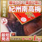 [直送][のし不可][最短発送] 和歌山県産 紀州南高梅の和の梅 しそ漬け 1kg 塩分8% 梅干 梅干し 産地直送 訳あり