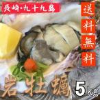 岩牡蠣 産地直送 長崎県九十九島産 5kg 生食用 送料無料 旬 活 岩がき 岩ガキ