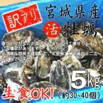 訳アリ 殻付き牡蠣 産地直送 宮城県産 5kg 生食用 送料無料 活 かき 生ガキ