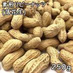 殻付き素煎りピーナッツ 【250g】【29年産 千葉県】