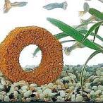 ★最大40倍+500円クーポン★ バイオミニブロック 淡水魚・海水魚どちらでも使用できます